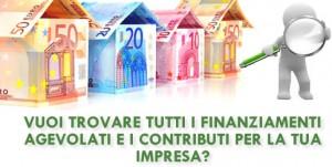Incentivi alle imprese II