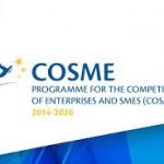Programma COSME – Finanziamenti Europei 100% a fondo perduto